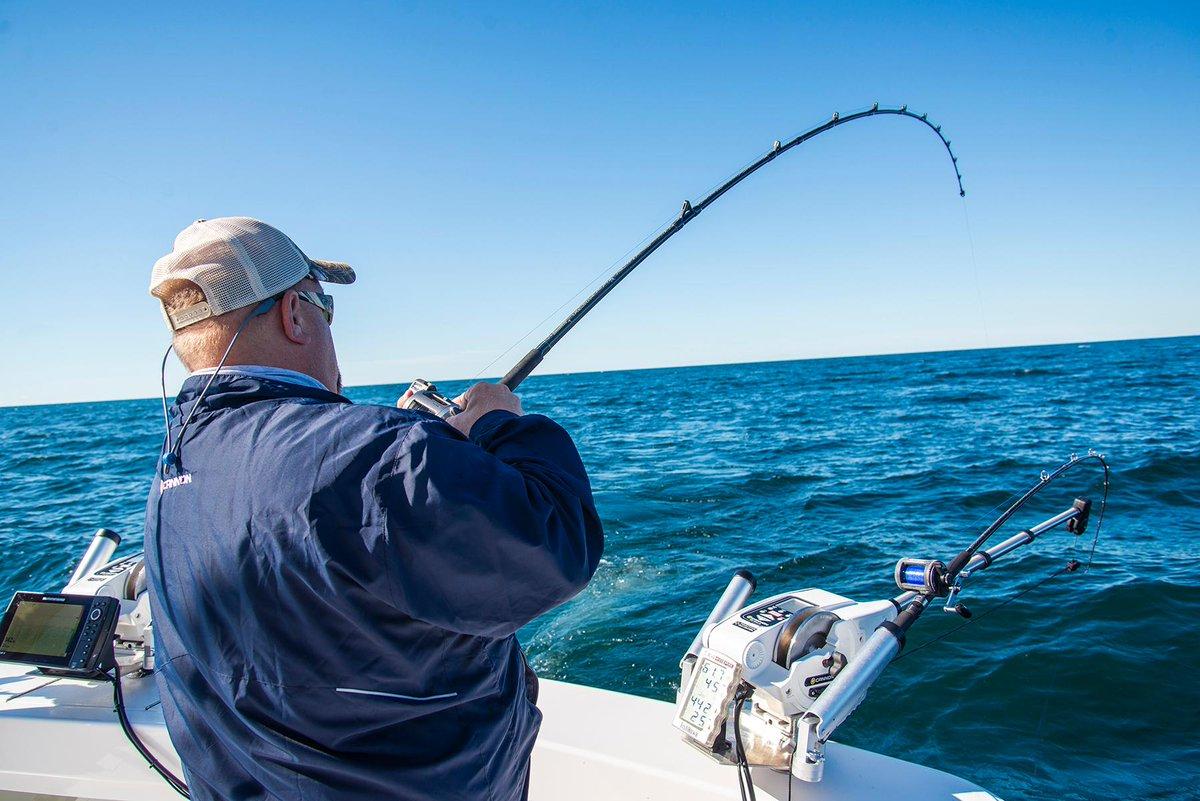 Chartplotters and Fish